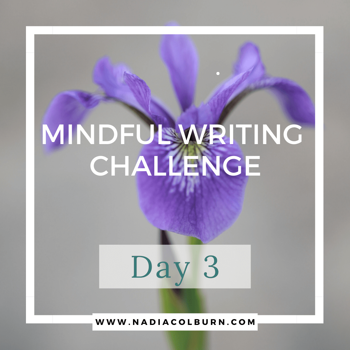 Mindful Writing Challenge Day 3 7