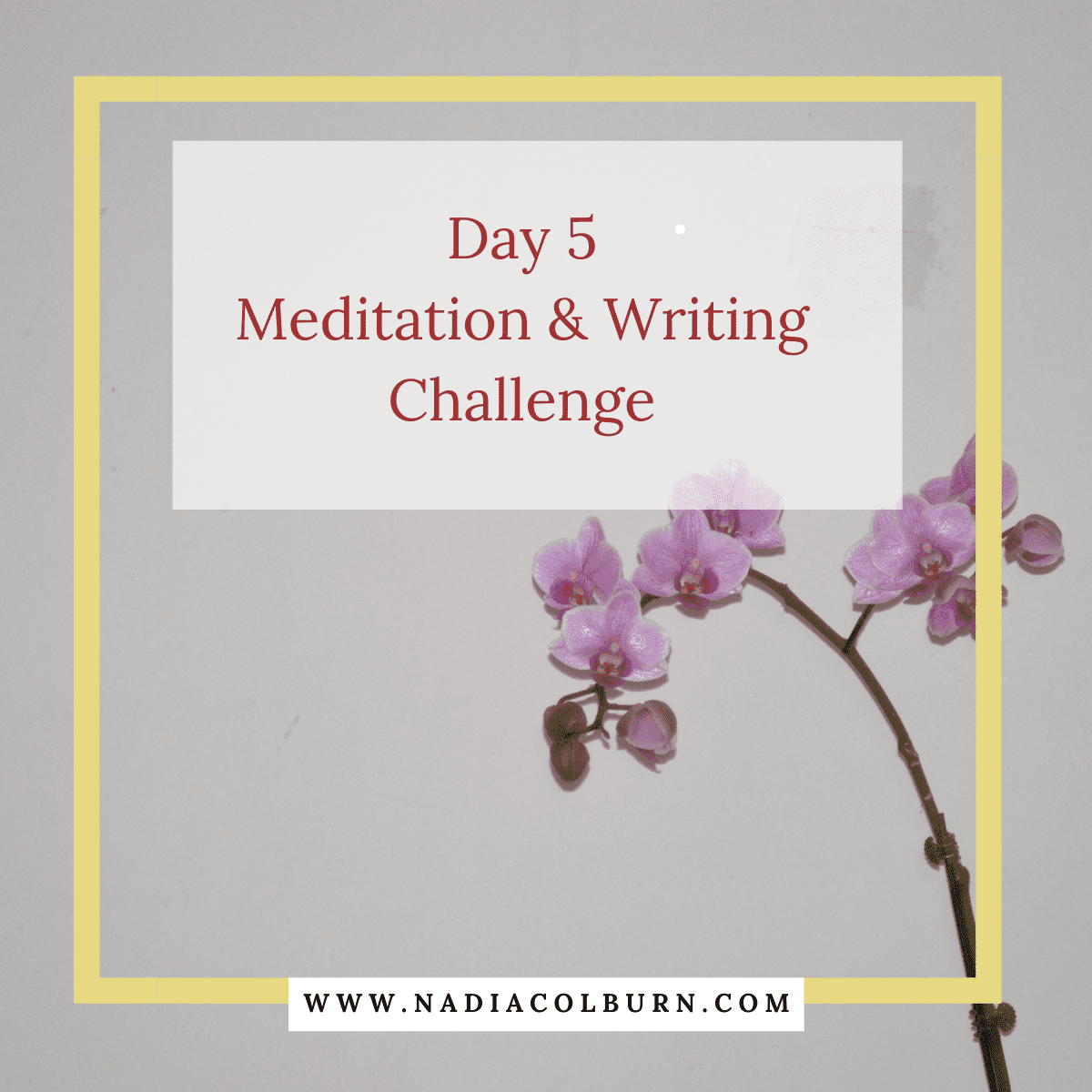 2021 meditation and writing challenge day 5 8