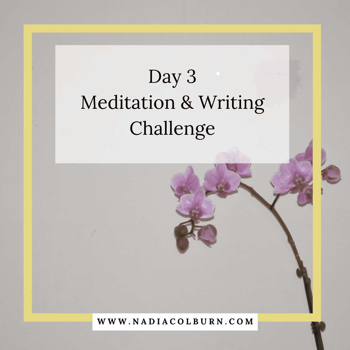 2021 meditation and writing challenge day 5 6